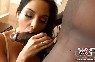الفارس سكارليت اللعب تحميل افلام سكسي مجاني مع بوسها الرطب