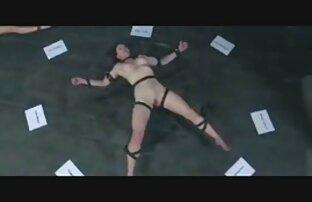 فتاة جميلة Ashlynn بروك تحميل افلام سكسي مجاني عارضة